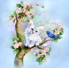 by Penny Parker white kitten blue bird Bird Drawings, Cute Drawings, Animal Drawings, White Kittens, Cats And Kittens, Penny Parker, Art Mignon, Belly Painting, Illustrations
