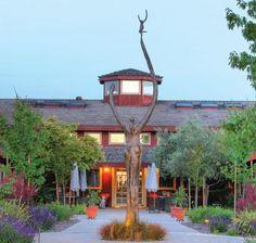De Loach Vineyards in Russian River Valley, CA. Wine club members. Our favorite yet!