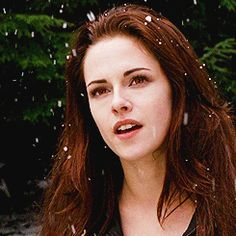 """I think that's our cousin from Denali"" Twilight 2008, Twilight Saga Series, Twilight Edward, Twilight Breaking Dawn, Breaking Dawn Part 2, Twilight Series, Twilight Movie, Jasper Twilight, Bella Cullen"