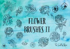 Dibujados a mano de flores Pinceles - El olor de las rosas por thesmellofroses