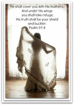 He Shall Cover thee with His Feathers, And under His Wings Shalt thou Trust: His Truth shall be Thy Shield and Buckler. Psalms 91:1