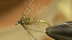 Mercers Tungsten Swing Caddis Emerger Fly Tying Instructions