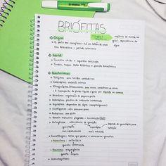 vestibulas College Notes, School Notes, Pretty Notes, Good Notes, School Motivation, Study Motivation, Mental Map, Study Organization, Study Hard