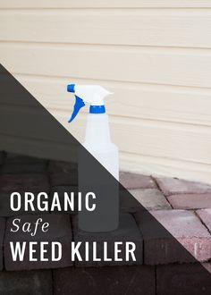 Weed killer natural on pinterest weed killer homemade weed killers