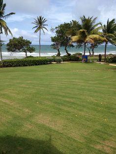 Lovely Tobago...