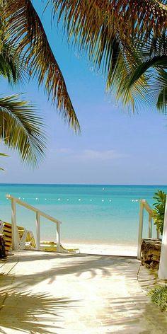 1359a1834878f 585 Best sol e praia images in 2019