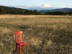 Things to Do in Seattle: Following The Red Chair Adventures | The Washington Bed and Breakfast Guild