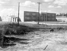 195- Hardee County High School - Wauchula, County. State Archives of Florida, Florida Memory.
