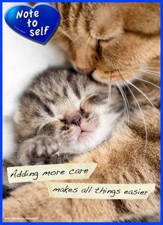 Add more care.