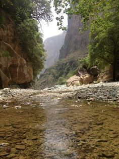 9 Cool Abha Ideas Abha Natural Scenery Saudi Arabia