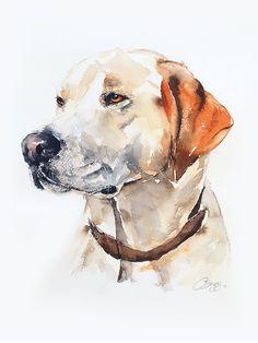 Custom pet portrait in watercolour