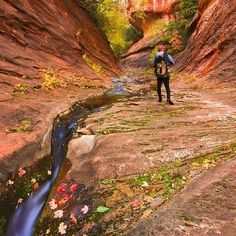 Reposting @miyouji: The best trail in Sedona, I will recommend Oak creek trail, everyone can hike the first half, you need wetsuit like me for the later half. But it is like fairy tale in autumn, foliage is just stunning, and the red slot canyon.#miyouji#beautifulblueplanet. . . . . . #travel#photography#landscapephotography#landscapelover#landscape#travelphotography#gettyimages#nationalgeographic#fall#foliage#fallcolors#sedona#arizona#canyoneering#hiking