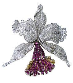 ORCHID WILD Gold and platinum ruby fancy diamond estate Orchid brooch; Oscar Heyman,