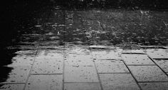 Lluvia, Piso, Agua, Mojado, Gotas