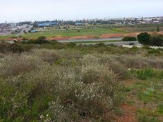 1,496m� Vacant Land For Sale in Mossel Bay | TMD Properties - Property South