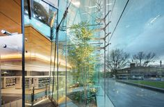 Surry Hills Library and Community Centre by FJMT, Australia