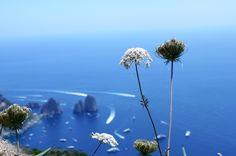 Capri #summer #photography #italy #love