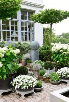 claus green white exquisite garden. I love this garden which costs largely of #pottedplants. The house is pretty amazing too!