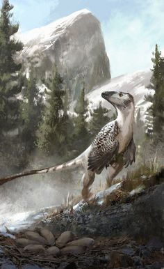 Troodon by Jonathan Kuo                                                                                                                                                                                 More