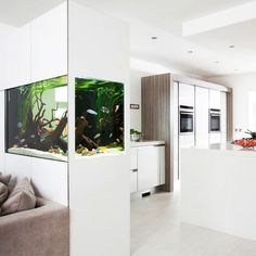 Those are the ideas of aquarium kitchen which can be your inspirations. Placing an aquarium in the kitchen is a smart idea to have a unique decoration. Aquarium Design, Home Aquarium, Aquarium In Wall, Corner Aquarium, Contemporary House Plans, Contemporary Kitchen Design, Contemporary Decor, Conception Aquarium, Driftwood Kitchen