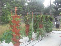Texas-based EzGro Garden allows anyone, anywhere to grow crops...