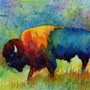 American Buffalo IIi Print by Hailey E Herrera
