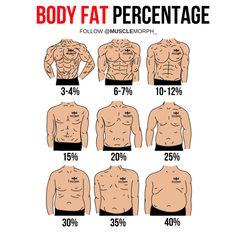 Body fat percentage musclemorph https://musclemorphsupps.com