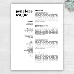 Page Modern Resume Template For Microsoft Word  Mac Pages