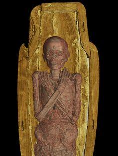 Современные технологии позволяют узнать самые сокровенные секреты мумий (21 фото)