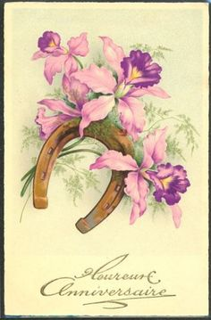 GL004-ANNIVERSAIRE-Orchidees-ORCHIDS-FANTAISIE-Belle-LITHO-MEISSNER-BUCH