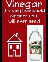 Vinegar – the only household cleaner you will ever need