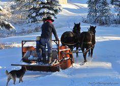 Amish snow plow, Aroostook County, ME taken by Paul Cyr