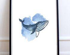 Humpback Whale Illustration