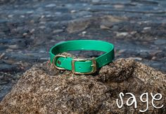 Waterproof Dog Collar in Bright Jade/Emerald Green
