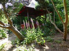 July 2015 in the Show Gardens | Walkers Nurseries