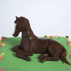 Delicious novelty cakes for birthdays and events