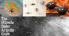 The ultimate guide to spider web crafts, art, food, and spider activities for kids with 40 of the very best spider ideas to enjoy at Halloween or anytime.