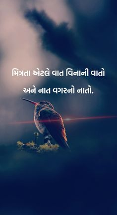 1872 best gujarati quotes images in 2019 Intj, Worth It, True Quotes About Life, Life Quotes To Live By, Boy Quotes, Truth Quotes, Tattoo Studio, Deep, Quotes Loyalty