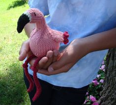 Reminds me of the flamingos at Oahu's Hilton Hawaiian Village. Flamingo by Susan B.