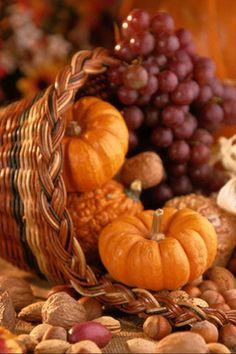 Autumn Equinox:  Cornucopia, for the #Autumn #Equinox.