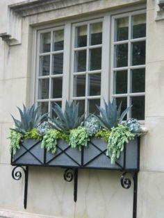 succulent window box SANCTUARY SUCCULENTS Design & Consulting Monarch Beach, Ca 619 888-1500