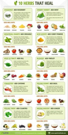 10 Super Herbs With Healing Powers