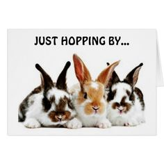 RABBITS HOPPING BY TO WISH YOU A HAPPY BIRTHDAY