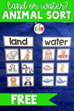 A fun freebie to help kids learn all about animals who live in the water and on land. A great way to introduce animal habitats to preschool and kindergarten kids. Perfect for a zoo or ocean unit. - Kids education and learning acts Zoo Preschool, Kindergarten Activities, Preschool Worksheets, Water Animals Preschool, Science Center Preschool, Ocean Animals For Kids, Preschool Animal Crafts, Sorting Kindergarten, Ocean Animal Crafts