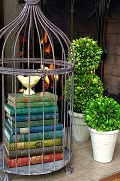 Books in a birdcage…