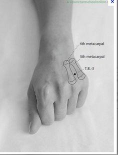 """Pour retrouver de l'énergie : Le point """"Gamut"""" l'un des centres de l'énergie vitale. La pression effectuée sue ce point stimule la production d'adrénaline,favorise l'énergie Il se trouve dans le creux entre l'annulaire et l'auriculaire, sur le dos de la main que vous n'utilisez pas constamment, donc de la main gauche si vous êtes droitière les.secrets.demma.over-blog.com/article-appuyez-pressez-respirez-68481858.html"""
