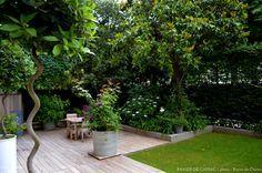 Un jardin au coeur de Paris ou épanouissent des hortensias, des iris, di Japon, du jasmin, des rosiers...