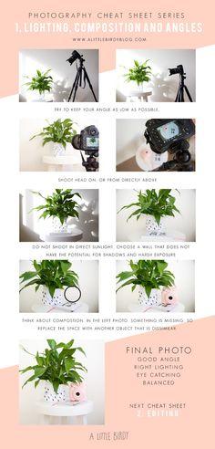 photography tips // 1. lighting, composition and angles