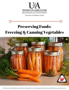 Freezing & Canning Vegetables Canning Food Preservation, Preserving Food, Canning Vegetables, Food Safety, Canning Recipes, Homemaking, Arkansas, Agriculture, Preserves