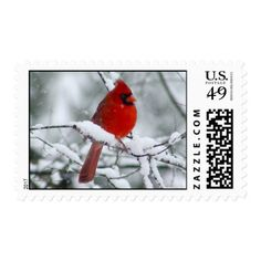 Red Cardinal in the Snow Postage Stamps